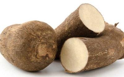 11 Benefici per la salute e la nutrizione delle patate dolci
